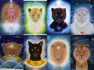 Feline extraterrestrial beings