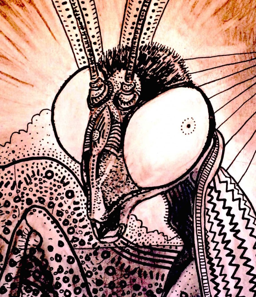 Mantis Alien ET